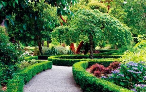 Виды садовых лабиринтов